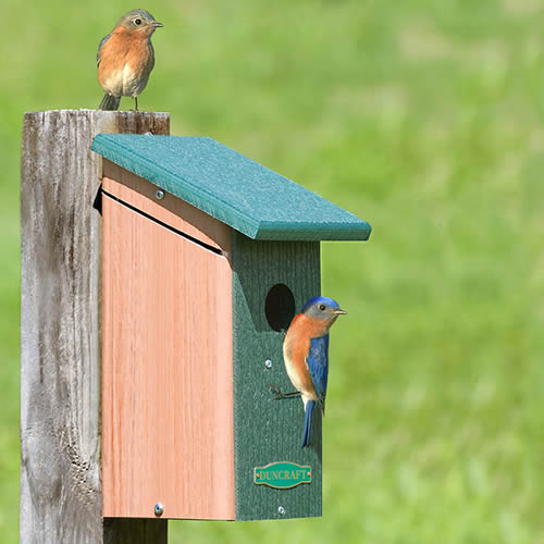 Bird-Safe' Predator Guard House