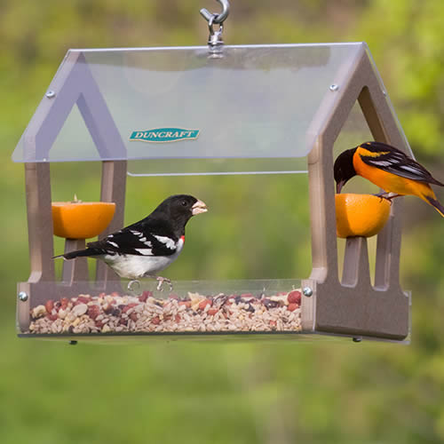 Eco-Strong Fruit and Seed Feeder