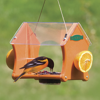 Eco-Delight Oriole Feeder