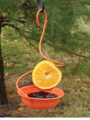 Metal Oriole Feeder Orange