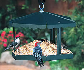 Fly Thru Metal Gazebo Feeder