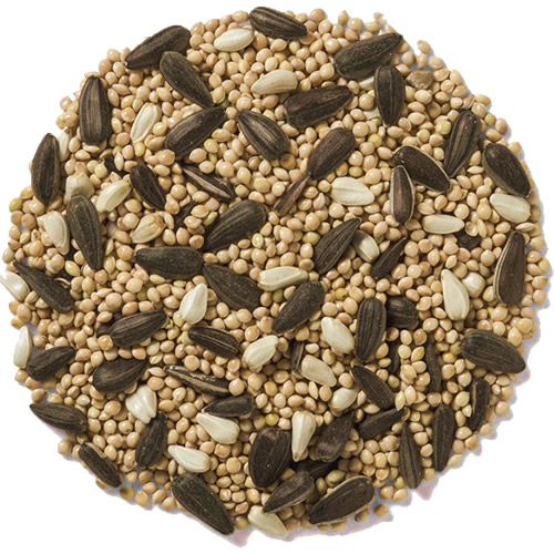 Wild Delight Feast Bird Seed - 20 lbs.