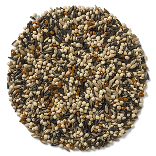 Wild Delight Outdoor Finch Food - 5 lbs.