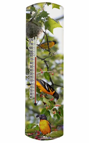 Oriole in Tree Thermometer