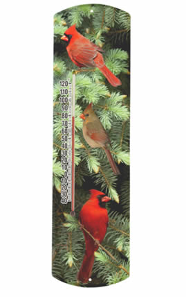 Cardinal in Spruce Thermometer