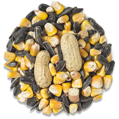 Wild Delight Crunch N Nut Seed - 8 or 20 lbs.