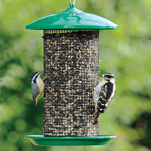 Seed Screen Bird Feeder