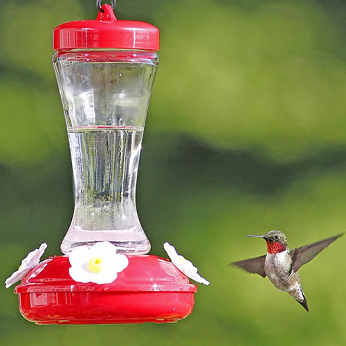 Gardenia Hummingbird Feeder