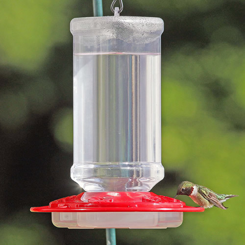 Scarlet Hummingbird Feeder