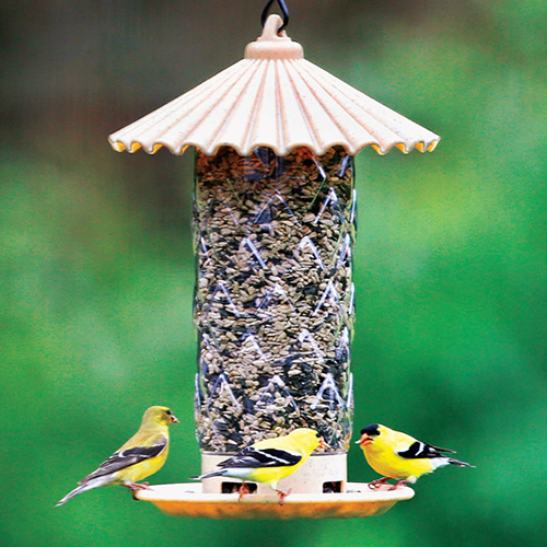 Fluted Seed Feeder