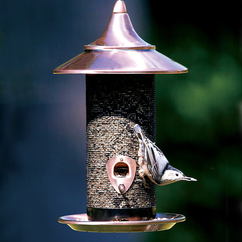 Provincial Seed Feeder