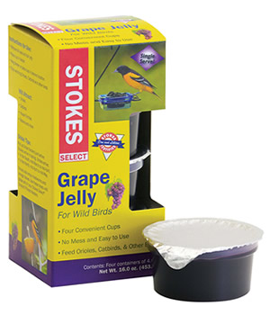 Select Grape Jelly - Sold Out -