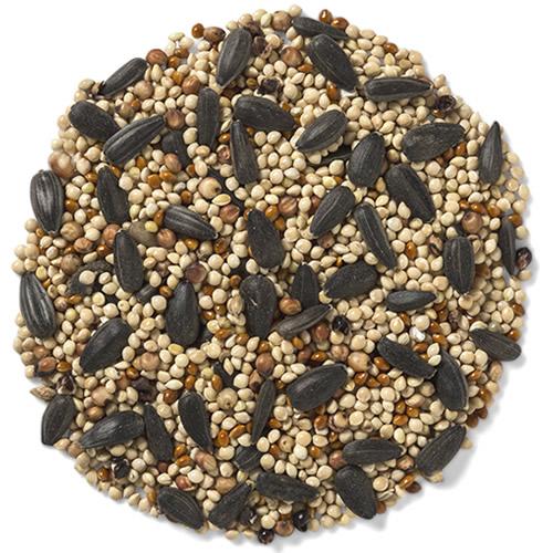 Wild Delight Buffet Bird Seed, 10 lbs. (391100) photo