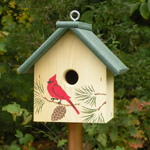 northern cardinal bird house plans