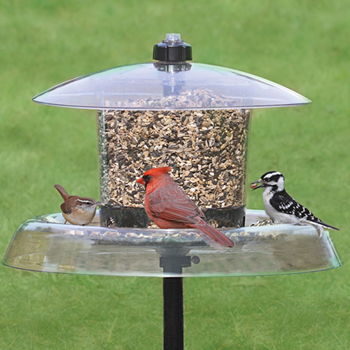 Droll Yankees Jagunda Squirrel-Proof Bird Feeder with Auger (4023) photo