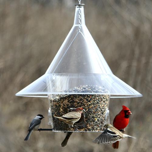 mandarin squirrel proof feeder - Squirrel Proof Bird Feeders