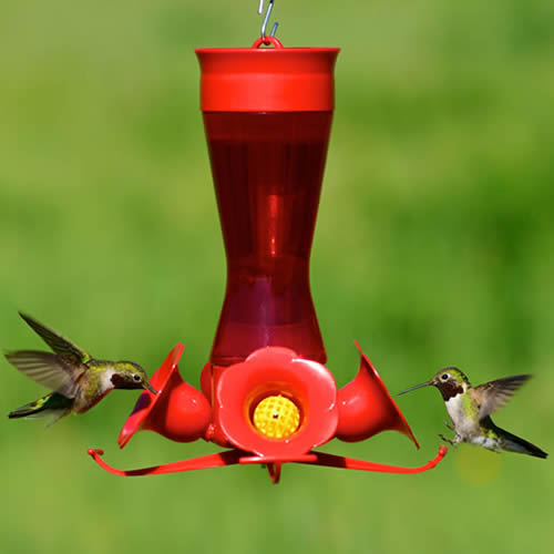 Pinch Waist Hummingbird Feeder