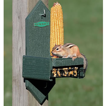 Eco Squirrel Chair Corn & Seed
