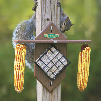 Eco Squirrel Corn & Suet Teeter