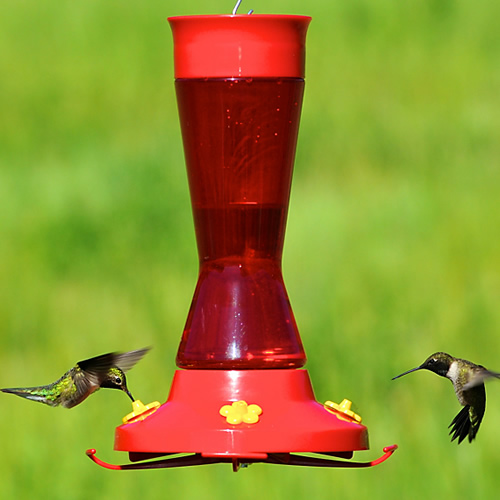 Large Pinch Waist Hummingbird Feeder