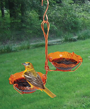 Oriole Double Cup Jelly Feeder