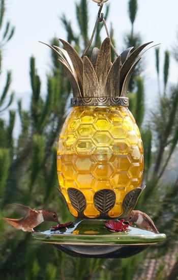 Duncraft Com La Pina Caribena Hummingbird Feeder