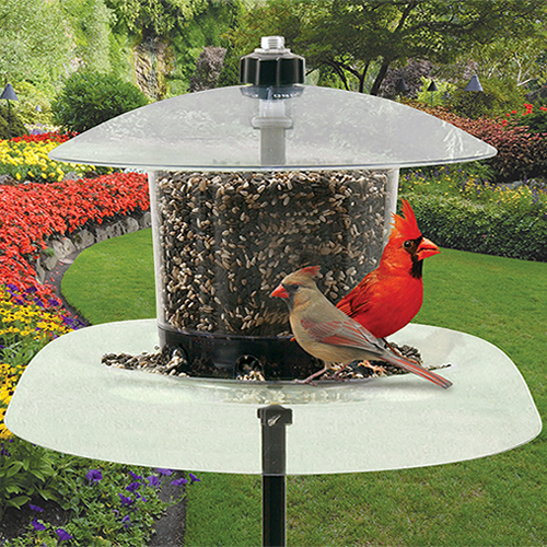 Droll Yankees Jagunda Squirrel-Proof Bird Feeder and Pole