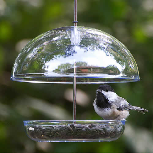 Droll Yankees Cutest Chickadee Feeder