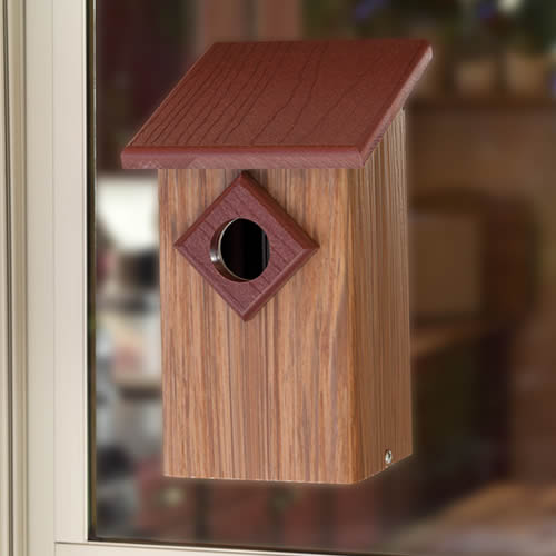 Observation Window Bird House
