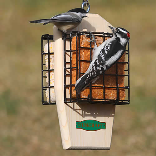 Clinger Suet Feeder