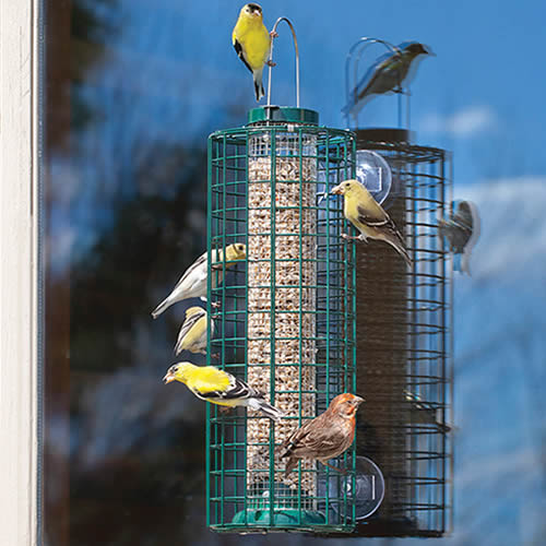Squirrel Proof Window Selective Bird Feeder
