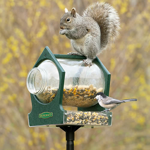 Eco-Squirrel Jar Post Feeder