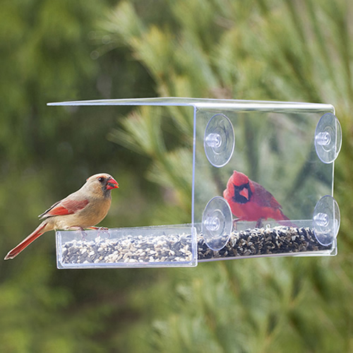 Duncraft Extreme Window Feeder