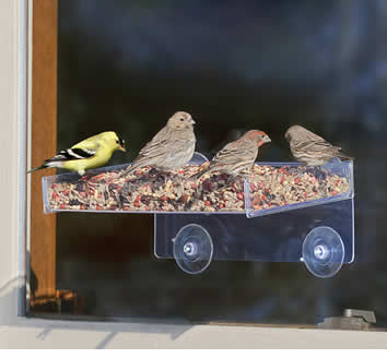 Open Air Window Platform Feeder