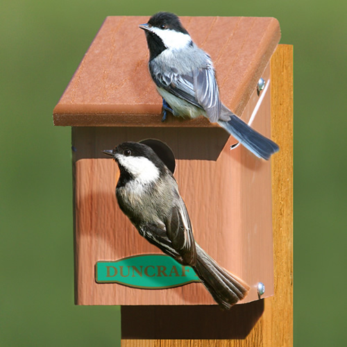 Eco-Chickadee Bird House