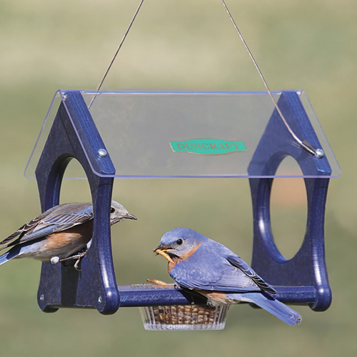 Eco Fly Thru Mealworm Feeder