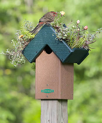 Roof Planter Fly Thru Bird House