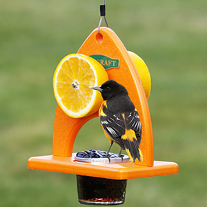Oriole Delight Feeder