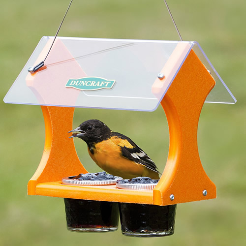 Eco-Jelly Oriole Feeder
