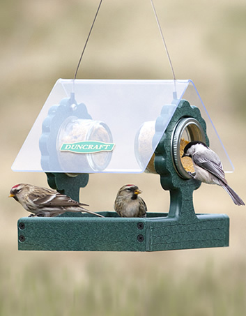 Treehouse Delight Feeder