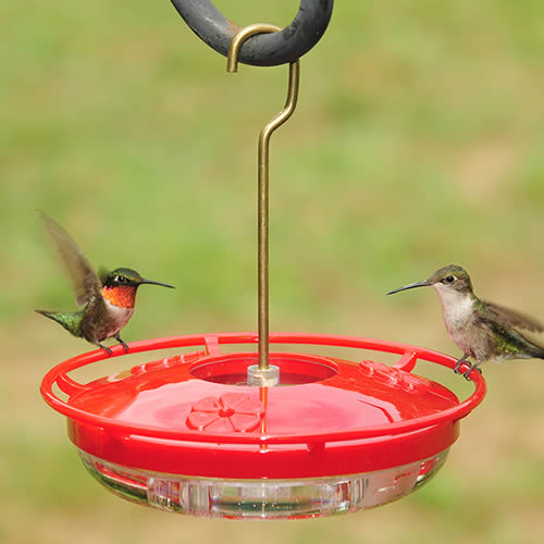 HighView Mini Feeder