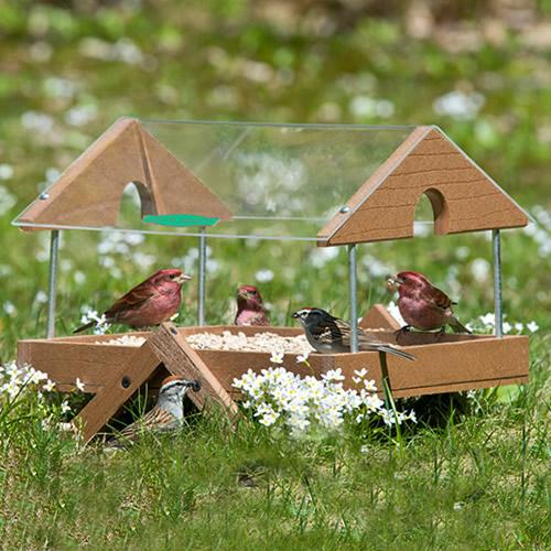 Duncraft Clearview Roof Ground Platform Bird Feeder (4315) photo