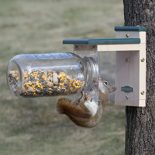 Down Under Squirrel Jar Feeder