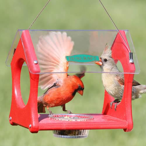 Eco-Strong Cardinal Feeder
