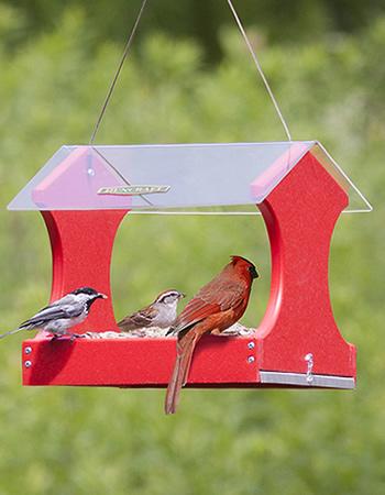 Classic Cardinal Platform Feeder