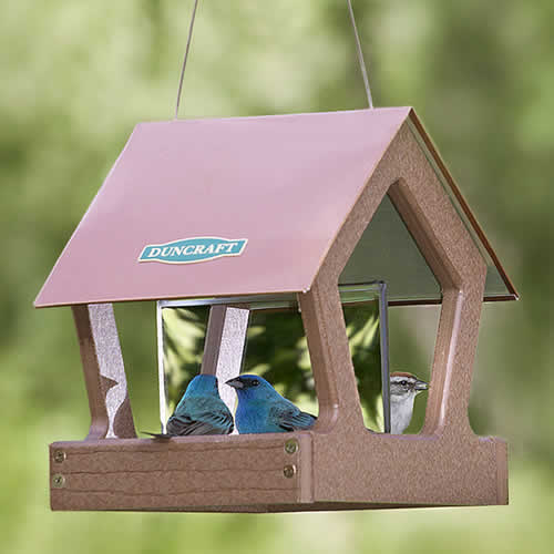 Reflections Fly Thru Feeder (51% OFF)