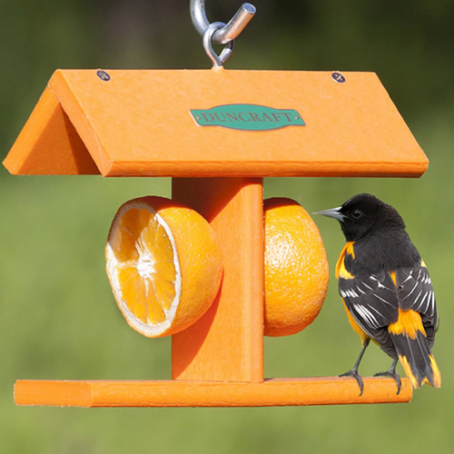 Duncraft EZ Fruit Feeder