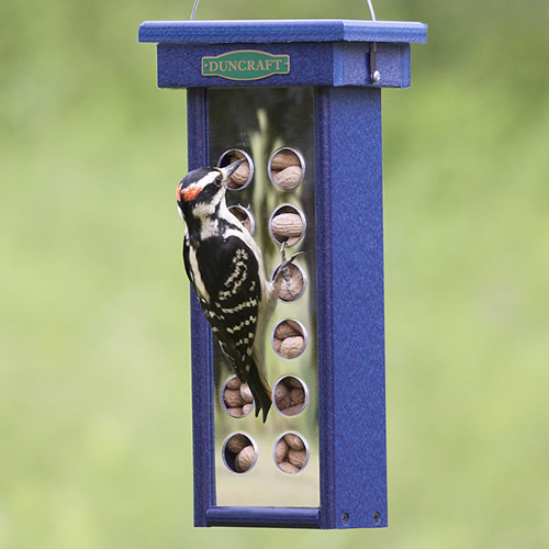 Reflections Woodpecker Feeder