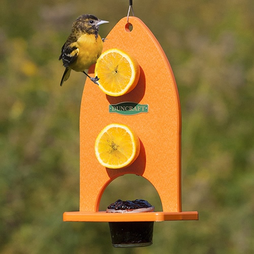 Double Delight Oriole Feeder