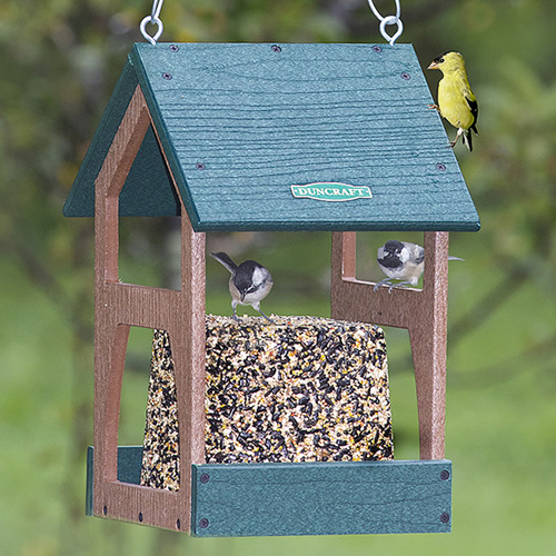 Hanging Seed Block Feeder - $20 OFF -
